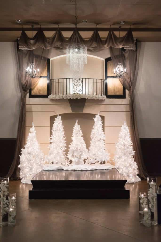 Elegant-Winter-white-trees-ceremony-backdrop_7859-684x1024