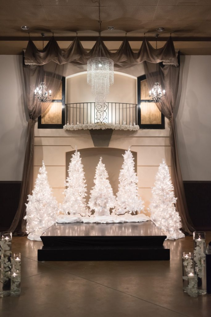 Elegant-Winter-white-trees-ceremony-backdrop_7859-684x1024